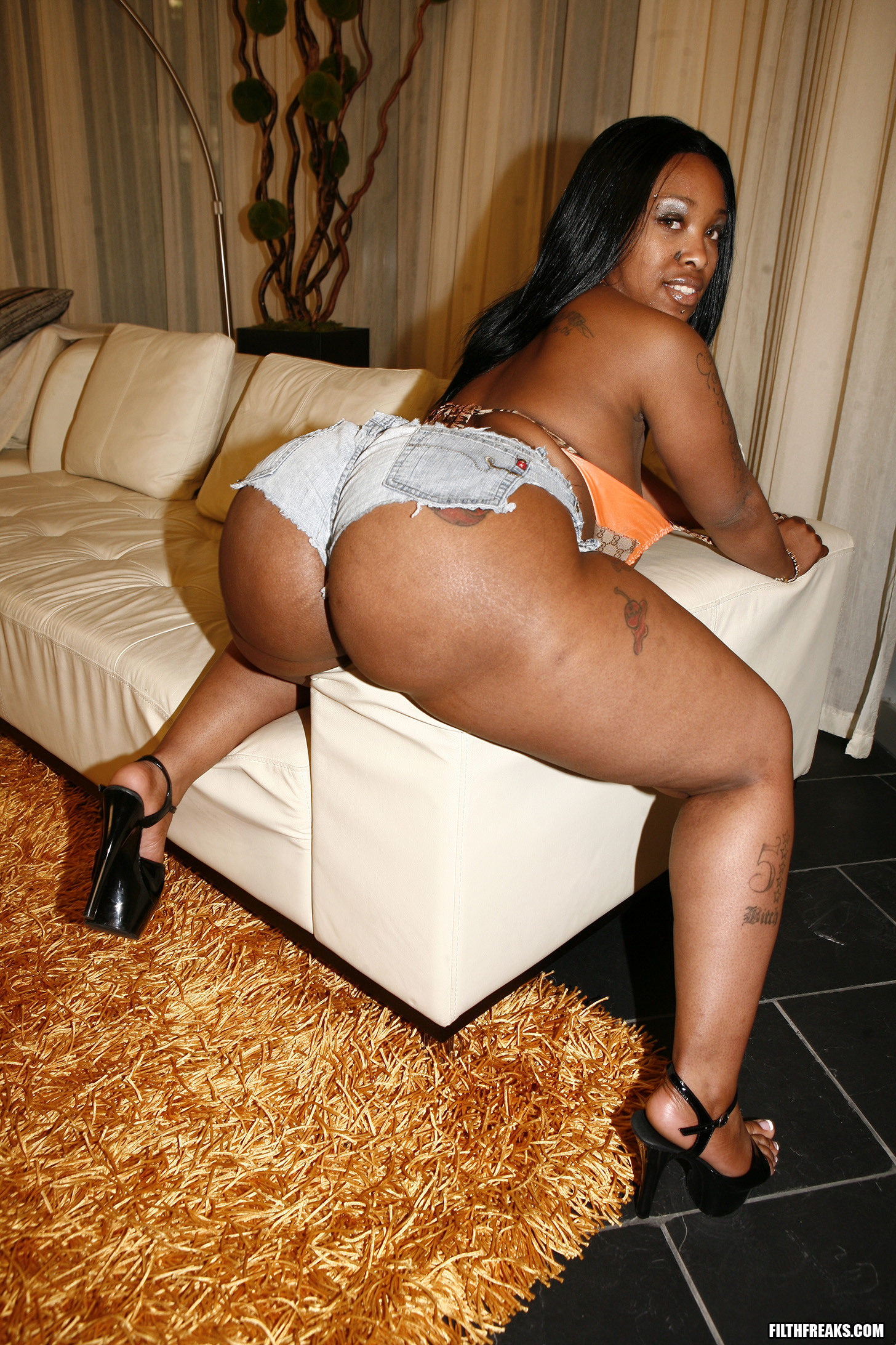 free porn samples of filth freaks - big booty fat thick women