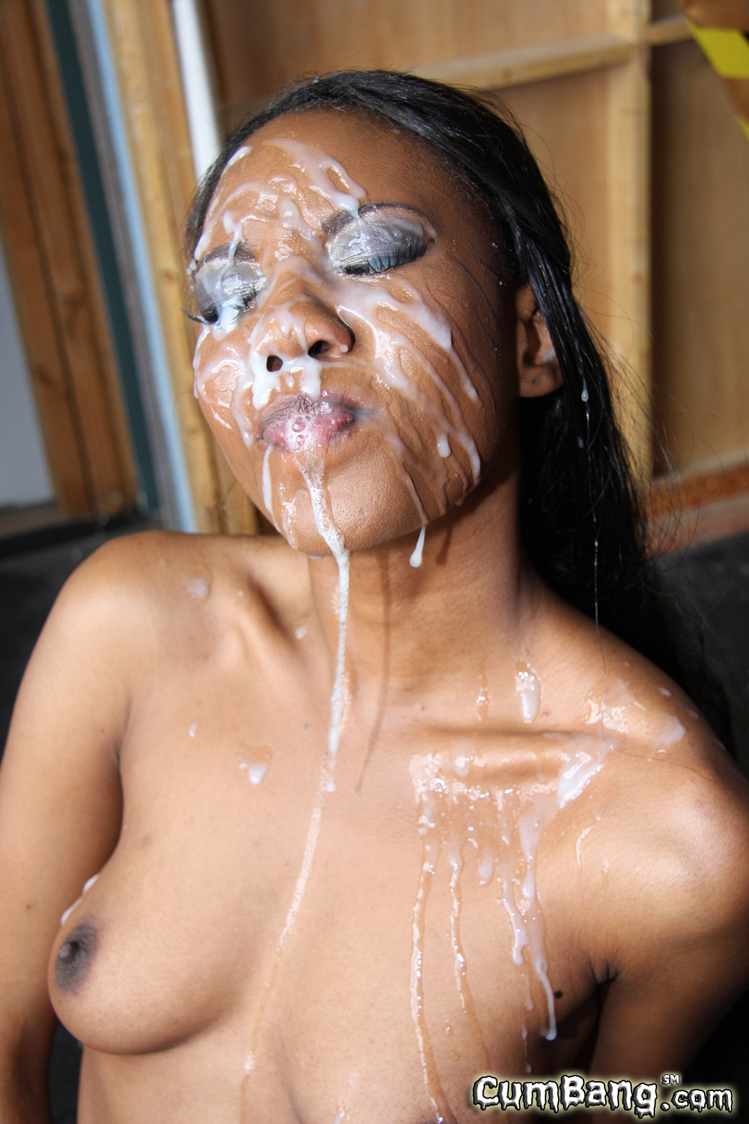 Ebony mature facial cumshots opinion you