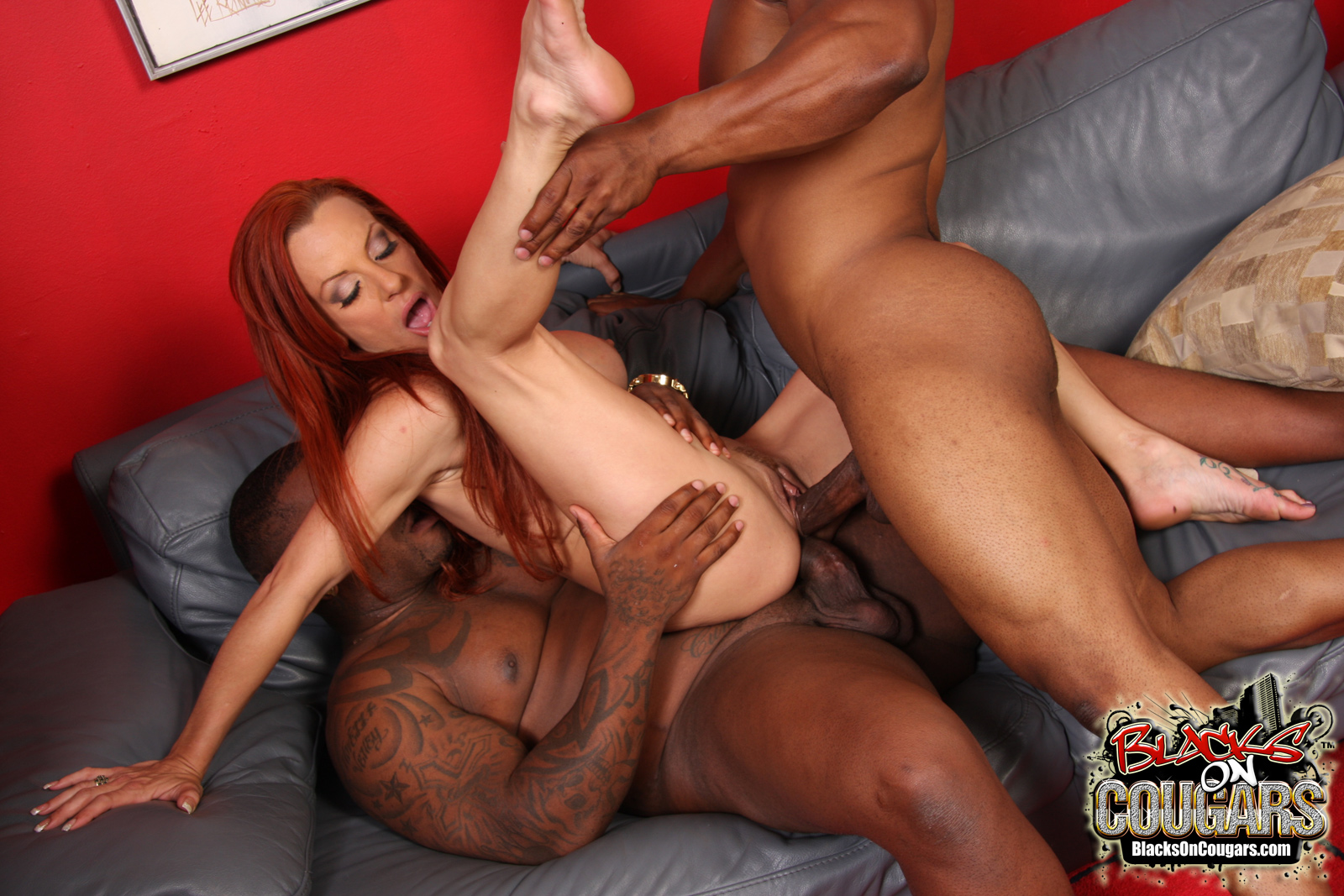 free porn samples of blacks on cougars - milf cougars fucking bbcs