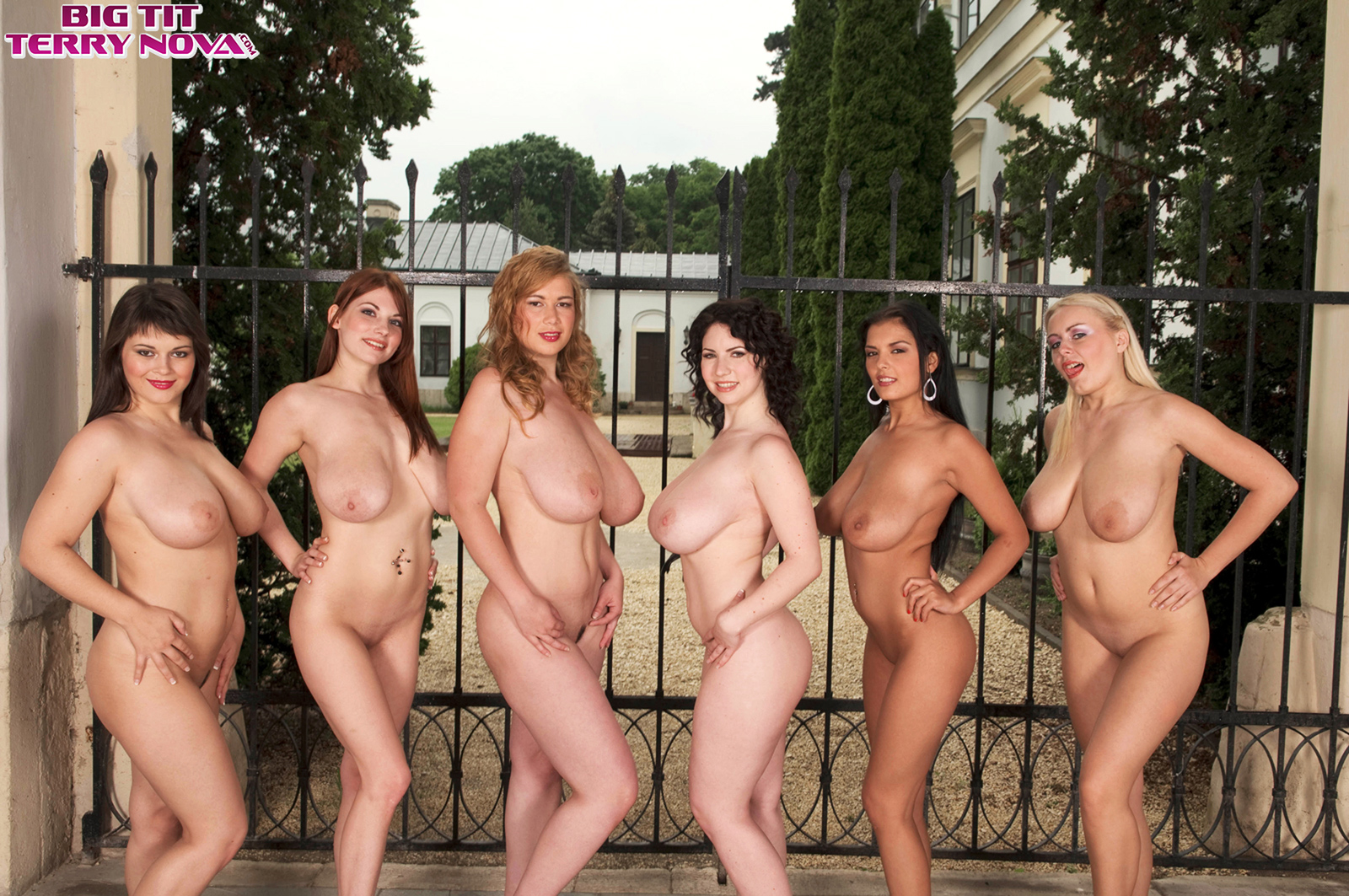 Huge Hungarian Tits