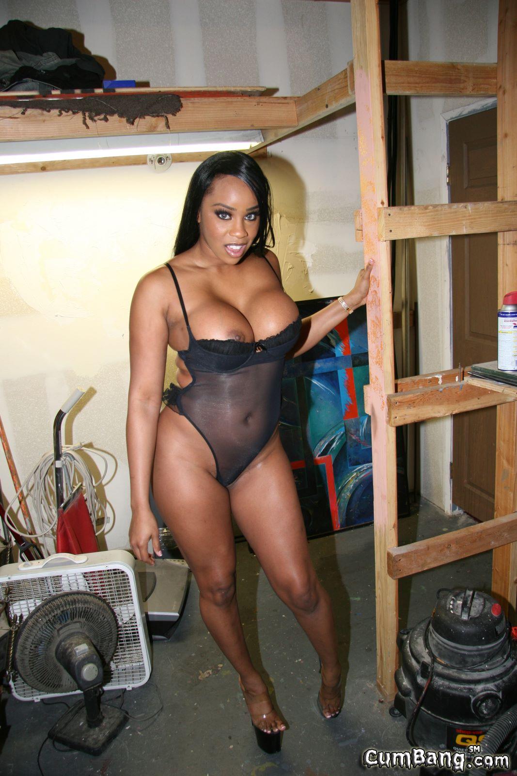 Sandi jackmon ebony pornstar #14