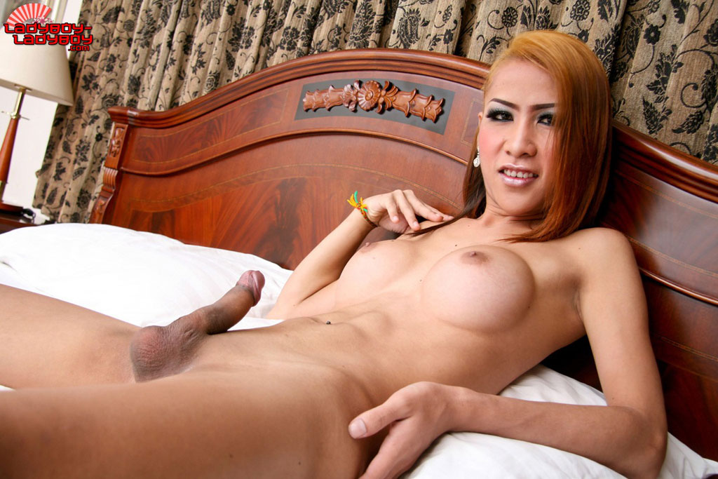 Shemale seduction galery naked transexual