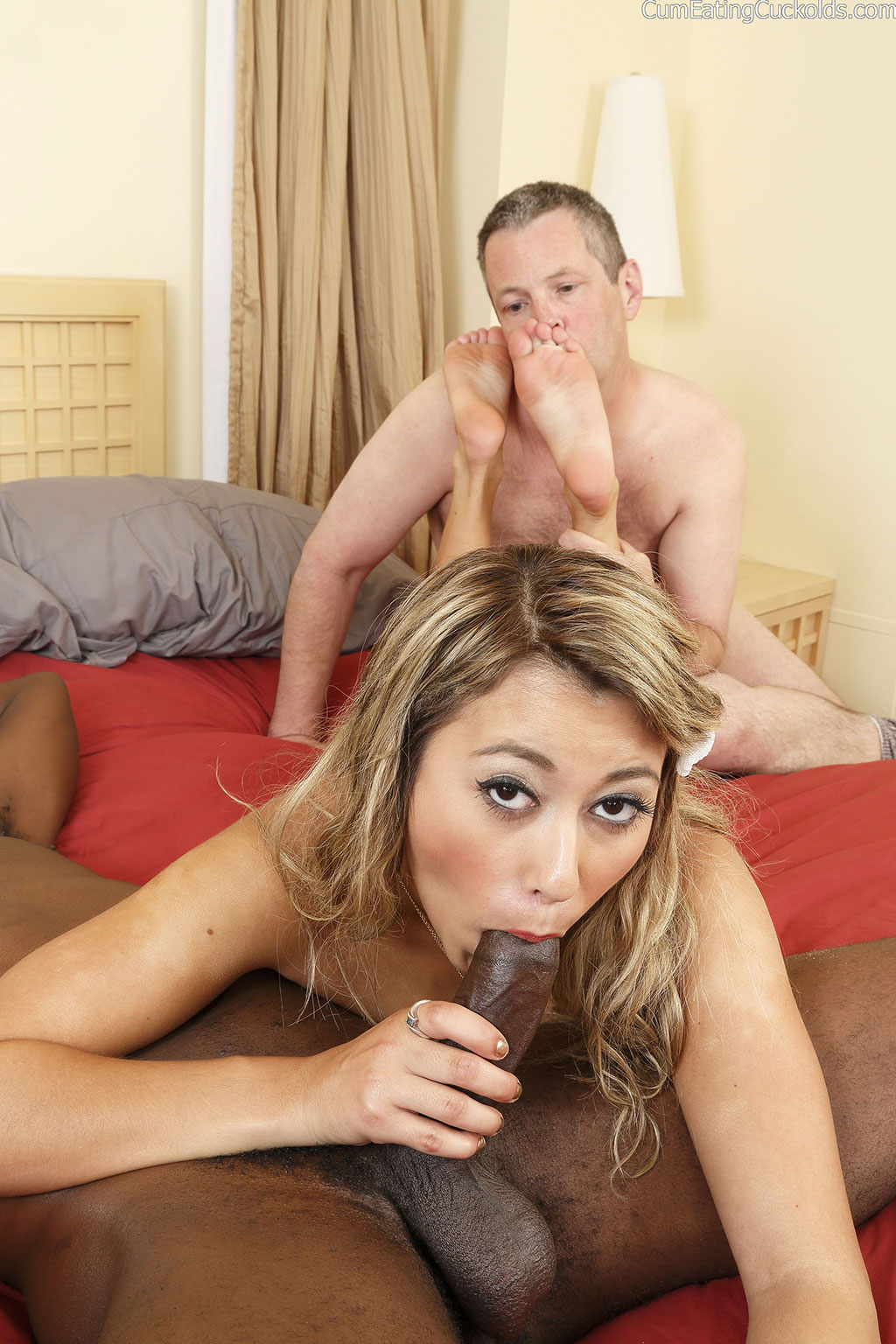 free porn samples of cum eating cuckolds - insane cuckold eating cum